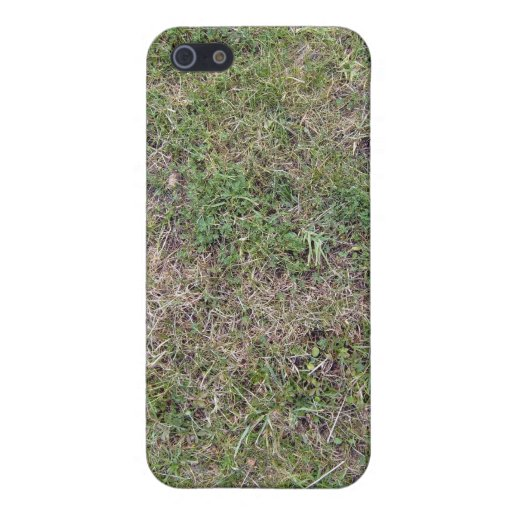 Dry Green Grass Ground Background Textures iPhone 5 Cases