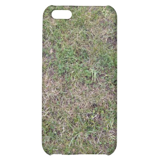Dry Green Grass Ground Background Textures Case For iPhone 5C