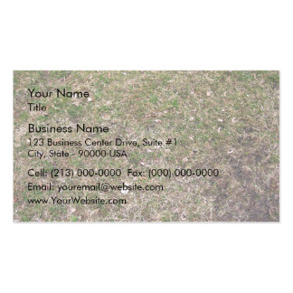 Dry Green Grass Ground Textures Double-Sided Standard Business Cards (Pack Of 100)