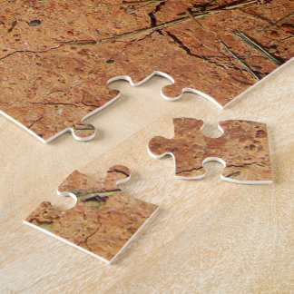 Dry Ground Photo Puzzle