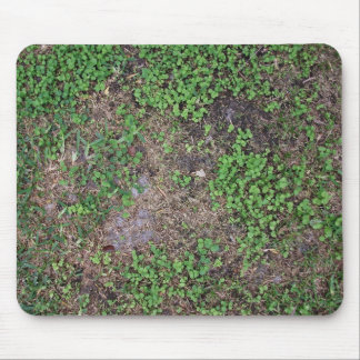 Dry Ground with Grass and  Dollar Weed Mouse Pad