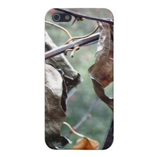 Dry leaves iPhone4 Case