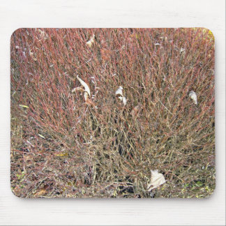 Dry Leaves on Dry Grass Field Mouse Pad