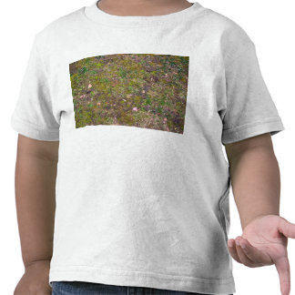 Dry Leaves On Mixed Grass Ground T Shirts