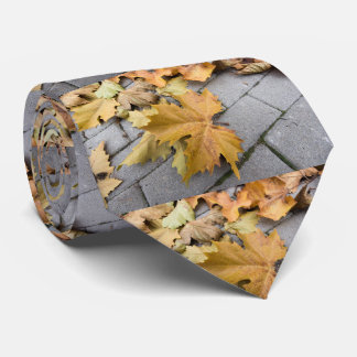 dry leaves on the pavement neck tie