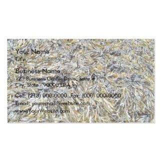 Dry Leaves Texture Business Cards