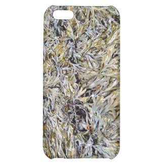 Dry Leaves Texture iPhone 5C Covers