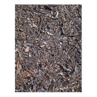 Dry Leaves Texture On Ground Postcard