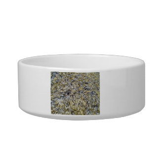 Dry Leaves Texture Cat Bowl