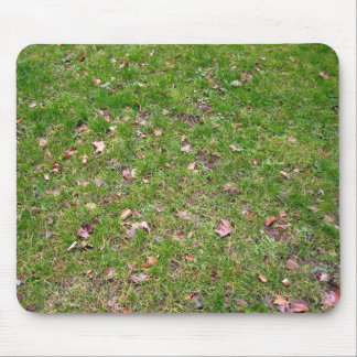 Dry Maple Leaves on Fresh Green Grass Field Mouse Pad