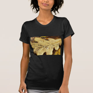 Dry oak leaf with drops of water on it tees