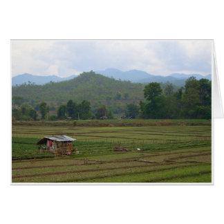 Dry Paddy Fields Card