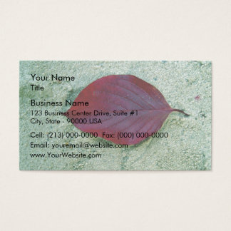 Dry Red autumn leaf laying on sand Business Card