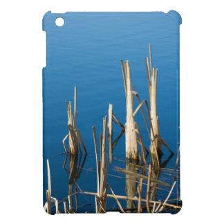 Dry reed in water iPad mini case
