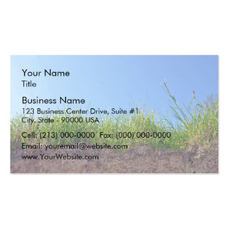 Dry Reeds Texture Double-Sided Standard Business Cards (Pack Of 100)