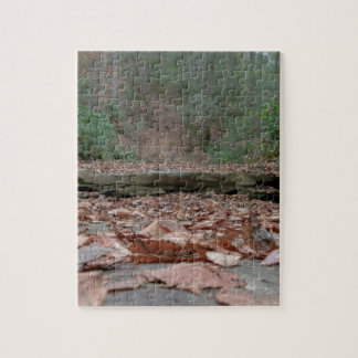 Dry River Bed Jigsaw Puzzle