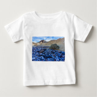 Dry Riverbed and Landscape Baby T-Shirt