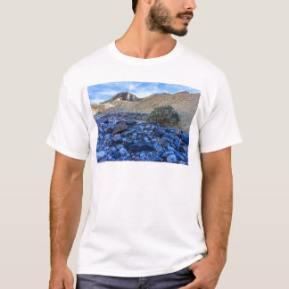Dry Riverbed and Landscape T-Shirt