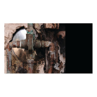 dry rot and pipes business card