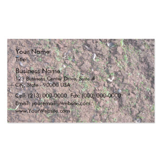 Dry Soil and Grass Blooming Double-Sided Standard Business Cards (Pack Of 100)