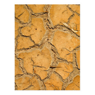 dry  soil  / crack earth post cards