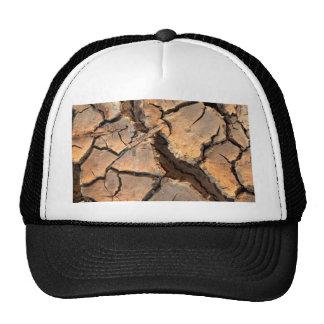 dry  soil  / crack earth trucker hat