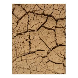 Dry Soil Postcard