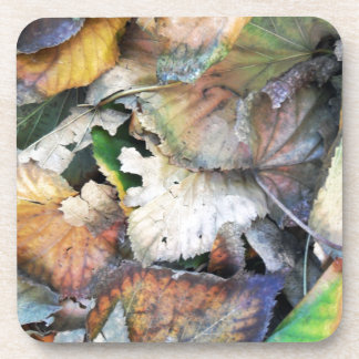 Dry Tilia Leaves Coaster