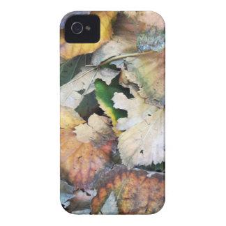 Dry Tilia Leaves iPhone 4 Case