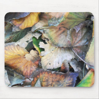 Dry Tilia Leaves Mouse Pad