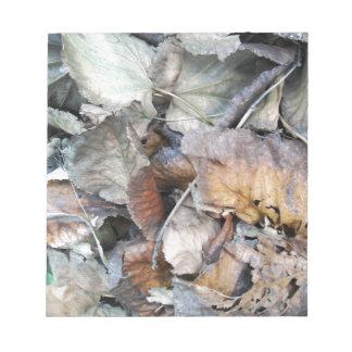 Dry Tilia Leaves Notepad