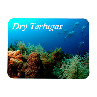Dry Tortugas National Park, Coral Reef, Florida Rectangular Magnets