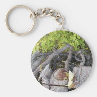 dry tree basic round button keychain