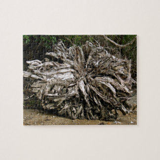 Dry tree roots in beach jigsaw puzzle