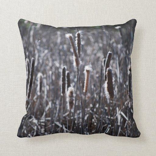 Dry Typha Latifolia Throw Pillow