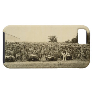 Drying leather, Argentina (albumen print on card) iPhone SE/5/5s Case