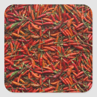Drying Red Hot Chili Peppers Square Sticker