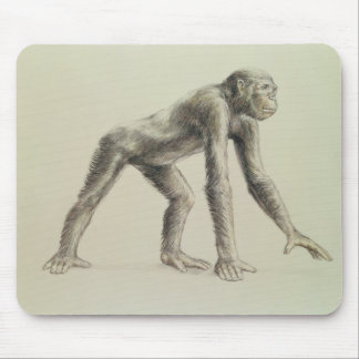 Dryopithecus Africanus Mouse Pad