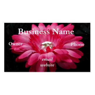 DSC00005 (2), Business Name, emailwebsite, Owne... Business Card