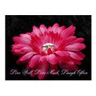 DSC00005 (2), Live Well, Love Much, Laugh Often Postcard