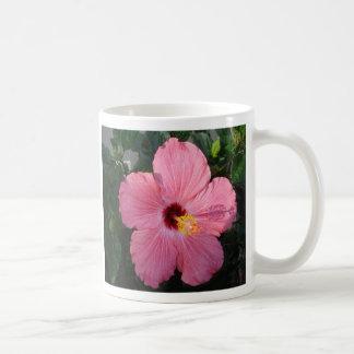 DSC00009_6, hibiscus, noun, pl.-cus or - cuses.... Coffee Mug