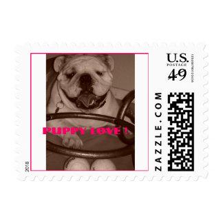 DSC00255, Puppy Love ! Postage Stamp