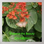 ¡DSC00433, preservan la belleza, VAN VERDE! Posters