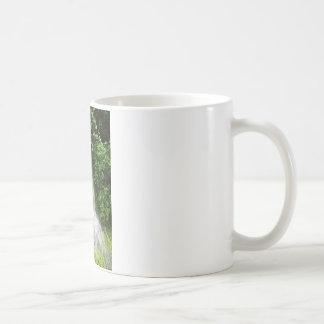 DSC00450.JPG COFFEE MUG