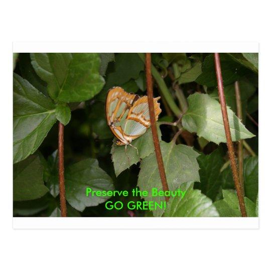 DSC00459, Preserve the Beauty, GO GREEN! Postcard