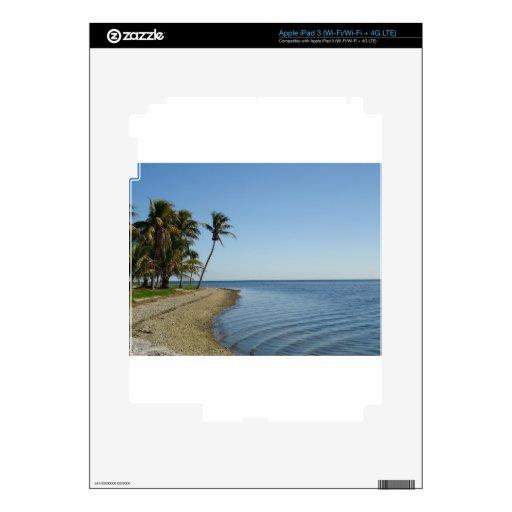 DSC00467.JPG PEGATINA SKIN PARA iPad 3