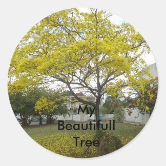 DSC00716, My  Beautifull Tree Classic Round Sticker