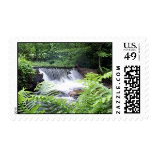 DSC00795 copy Stamp