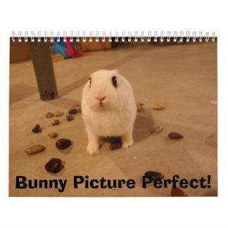 ¡DSC01066, imagen del conejito perfecta! Calendario De Pared