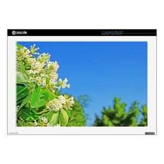 DSC08709.jpg Laptop Decal